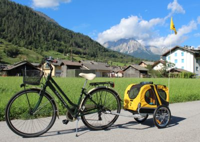 noleggio bici con carrellino porta cani Cicli Bettega Primiero