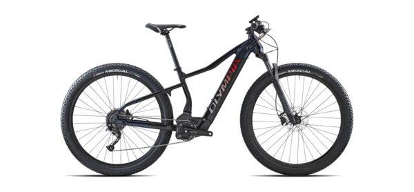 Olympia Performer 900 limited Edition Cicli Bettega Mezzano