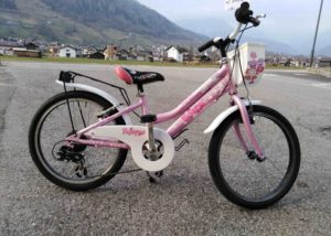 MTb bimba 20 usato Cicli Bettega Mezzano